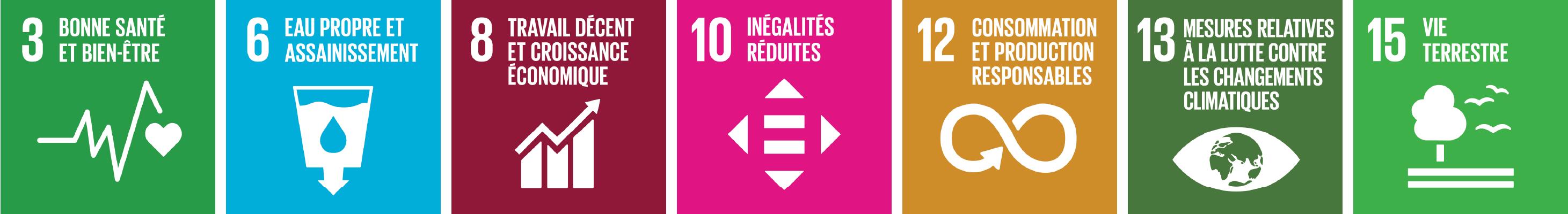 Objectifs de Développement Durable des Nations-Unies