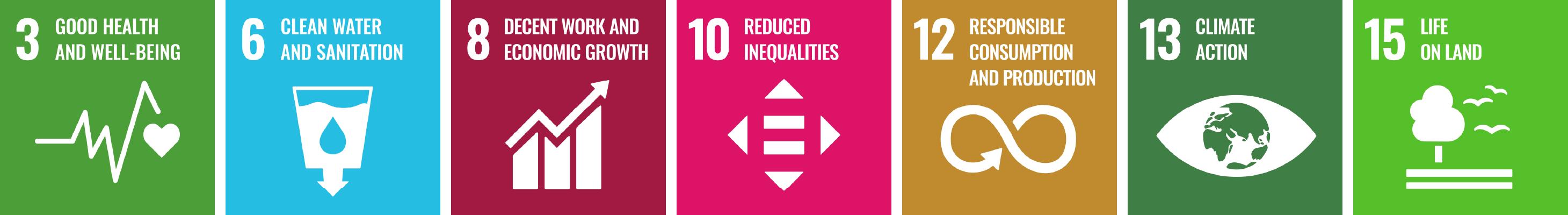 United Nations' Sustainable Development Goals (SDGs)