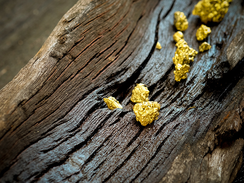Gold nuggets on wood